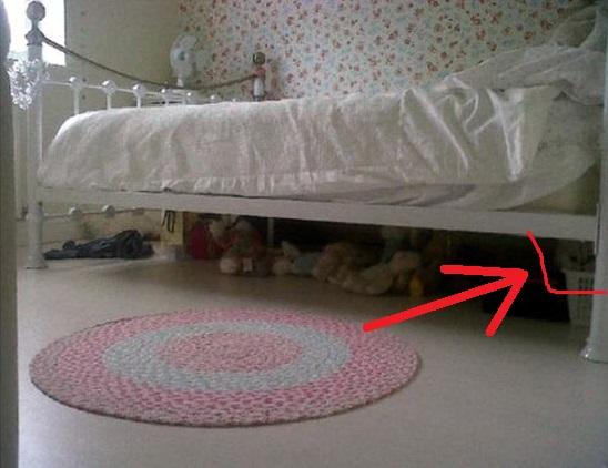 hidden-cat-riddle.jpg