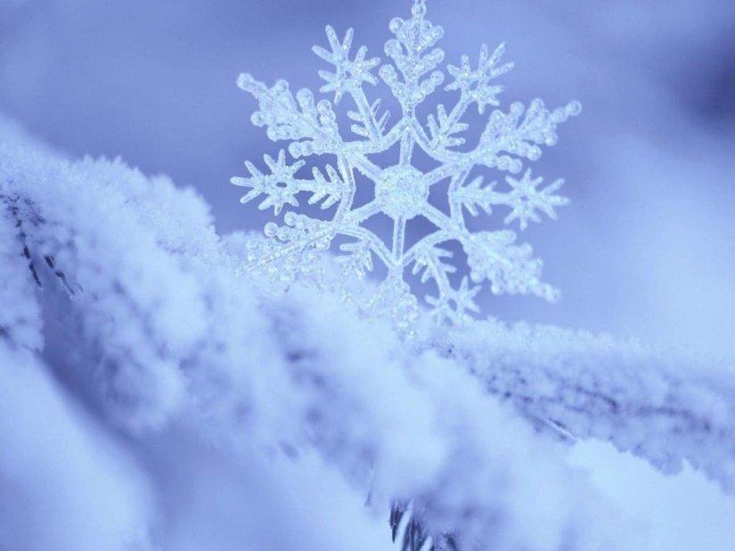 sneg-priroda-zima-makro.jpg